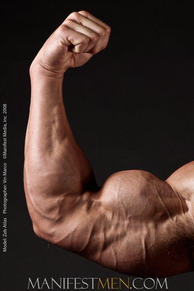 amazing naked male body